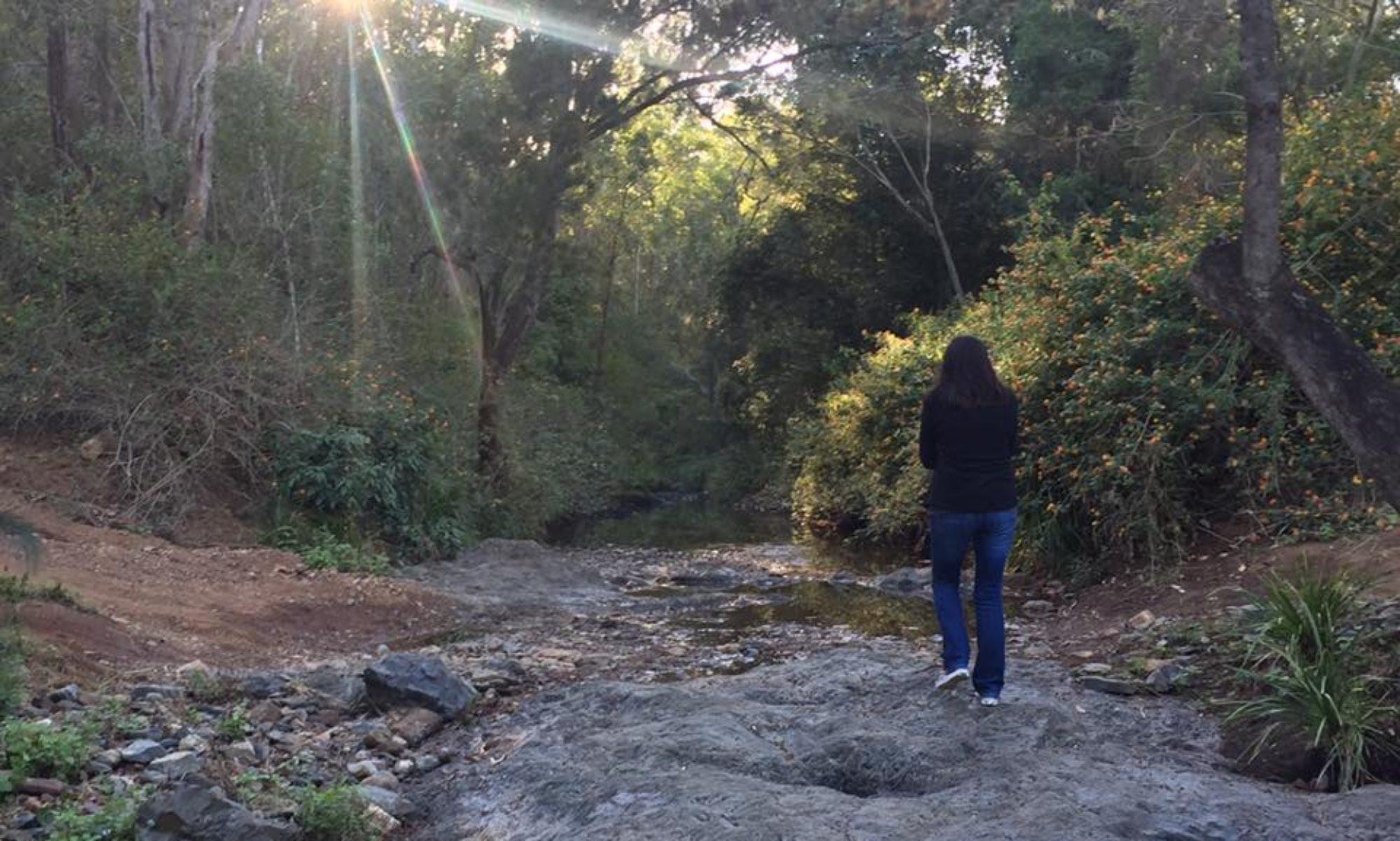 Banks Creek Retreat
